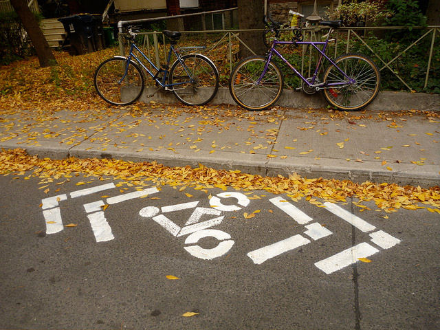20101012parkdale-sharrows-2.jpg