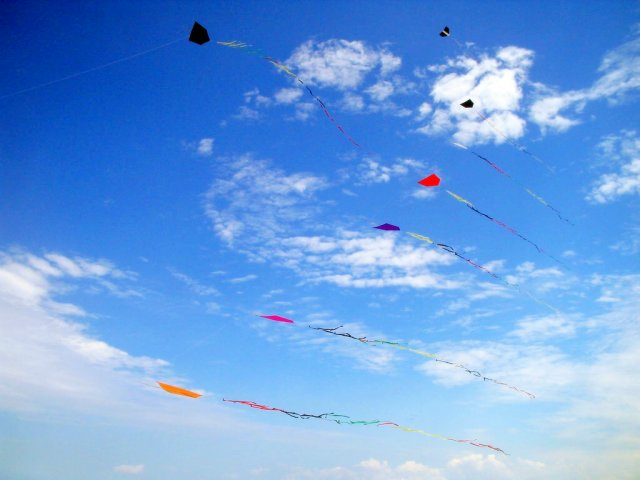 temperatures as of late, the windy weather is perfect for kite flying!