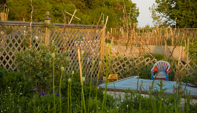 Allotment_Gardens_2.jpg
