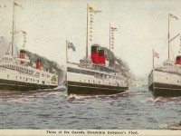 "Postcard view of steamers Cayuga, Chippewa, and Corona, formerly of the Niagara Navigation Company, ca. 1925, {a href=""http://images.maritimehistoryofthegreatlakes.ca/235/data?n=52""}Maritime History of the Great Lakes{/a}."