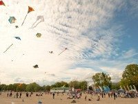 Let this kite festival be the wind beneath your weekend's wings.
