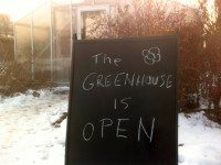 Trinity Bellwoods' greenhouse will host it's final discussion group this weekend. Photo courtesy Gene Threndyle.