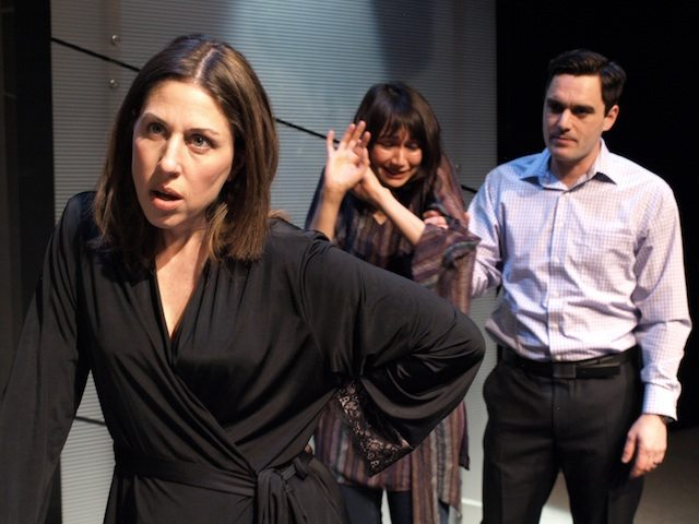 Niki Landau, Elisa Moolecherry, and Gray Powell in Other People's Children. Photo by Nir Bareket.