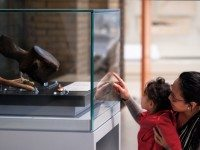 Rosalia Bambo and son, Santiago, observing whale vertebra at ROM. The bone was unearthed in 1988  during construction of Harbourfront LRT.