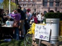 A sign, spotted at Wednesday's Occupy Gardens rally at Queen's Park.