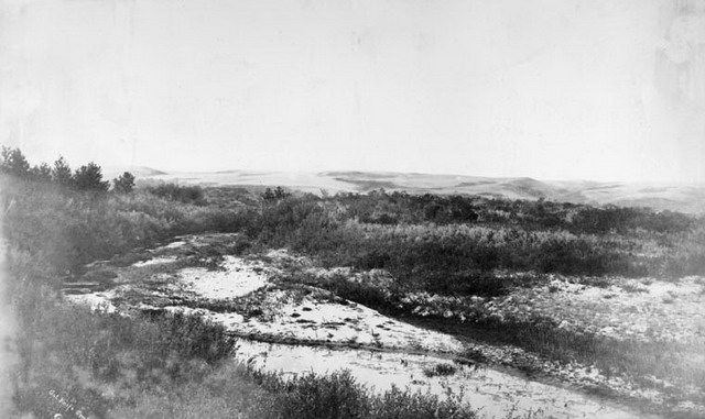 Photo of Cut Knife battlefield, ca  1885  From the Library and Archives Canada (PA 031492)