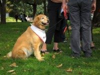 blessingofthedogs0930_3