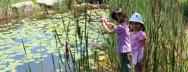Learn how to get your kids connected with nature. Image courtesy of Evergreen Brick Works.