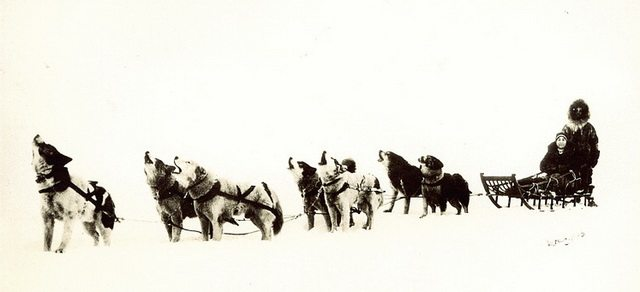 Dog team with man and woman on sled in Alaska, ca  1940  Photo by Taylor G  Morris from the Peel's Prairie Provinces at the University of Alberta Libraries