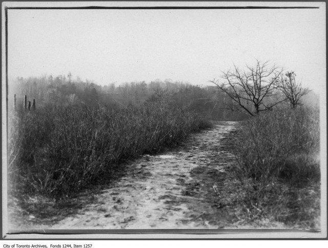 This footpath as it appeared in 1908, looking west, is where the Bloor Viaduct was later built. Toronto Archives Fonds 1244 Item 1257.