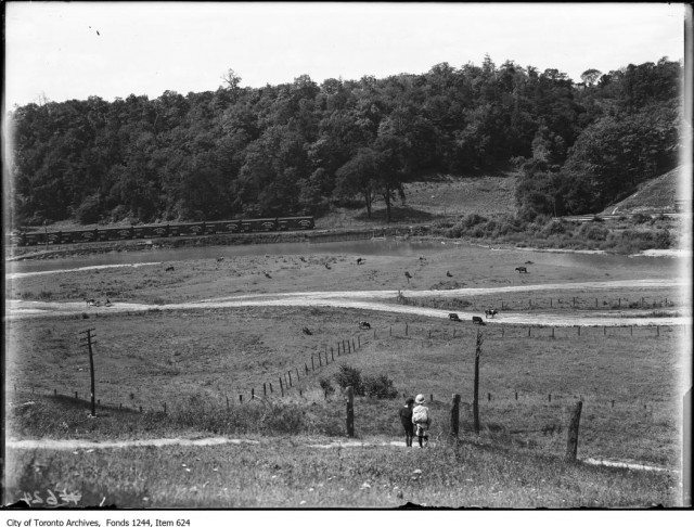 The Don Valley around 1909 as it would have appeared when Ernest Thompson Seton was writing about his childhood. Photo from Toronto Archives Fonds 1244 Item 624.