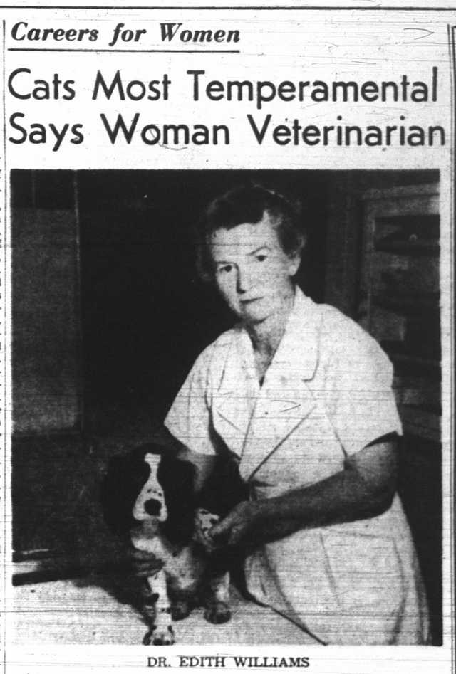 Dr. Edith Bickerton Williams expressing a preference for dogs.  The Globe and Mail, June 14, 1946.