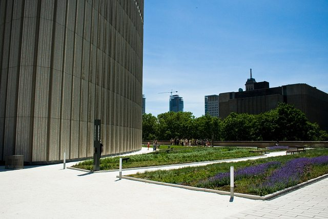 City Hall's green roof. Photo by Josh Jensen from the Torontoist Flickr Pool.