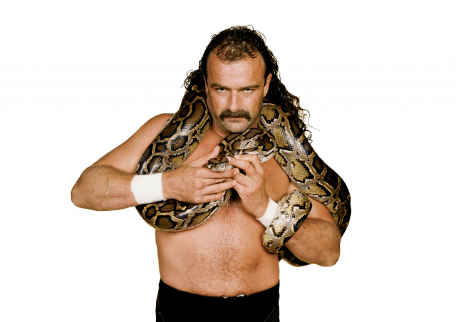 "Jake ""The Snake"" Roberts in his wrestling salad days. Photo courtesy of Sweat Equity / Brickworks Entertainment."