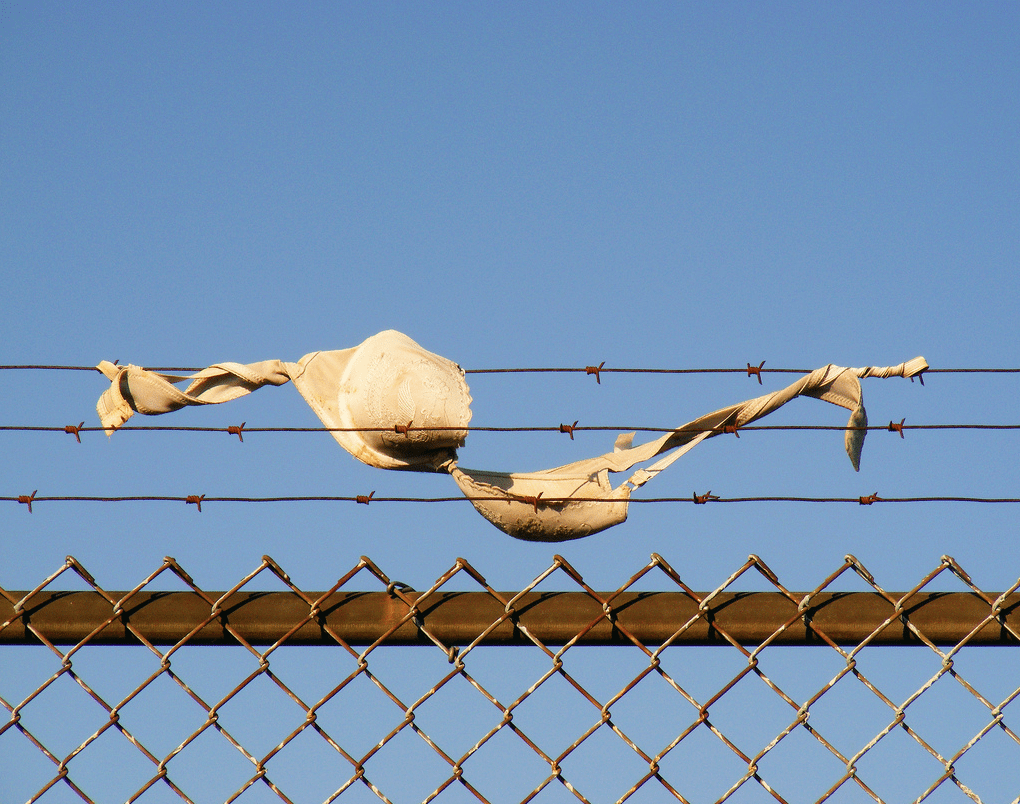 why are bras causing a commotion in ontario s criminal justice system photo by jeff stewart from the flickr pool