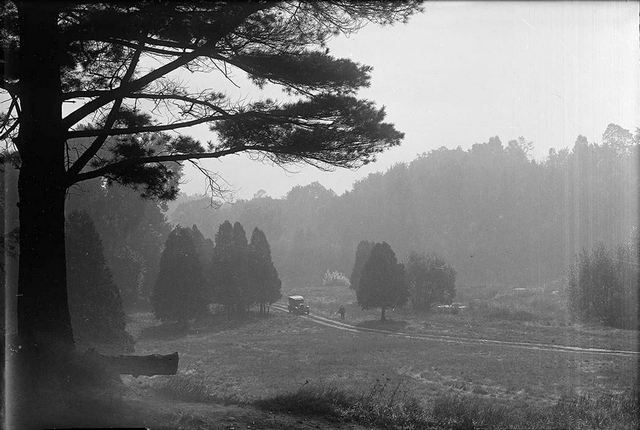 Sunnybrook Park, shortly after it was conveyed to the City of Toronto.  City of Toronto Archives, Fonds 1231, Item 468.