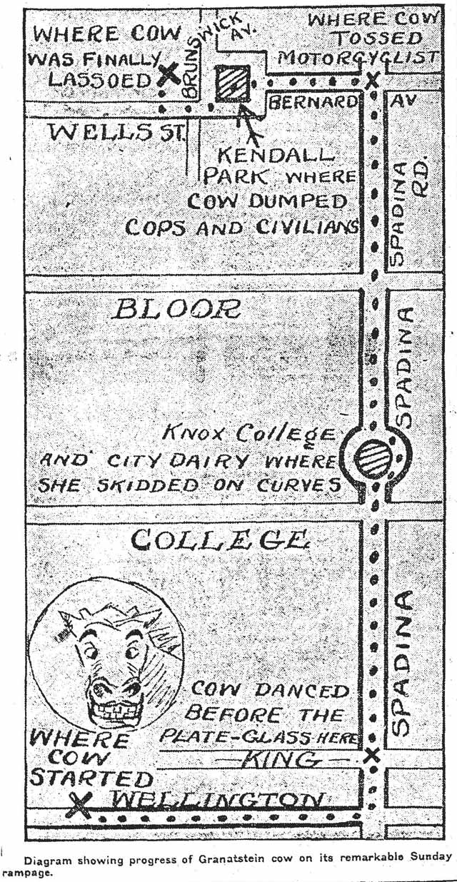 Map of the cow's trek across town. Toronto Star, June 16, 1913.