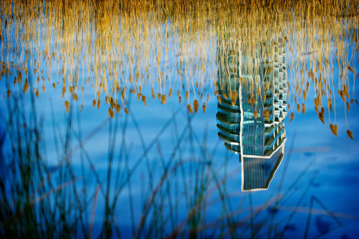 Reflecting in Etobicoke Park. Photo by Doris Woudenberg and used courtesy of the Friends of the Greenbelt Foundation.