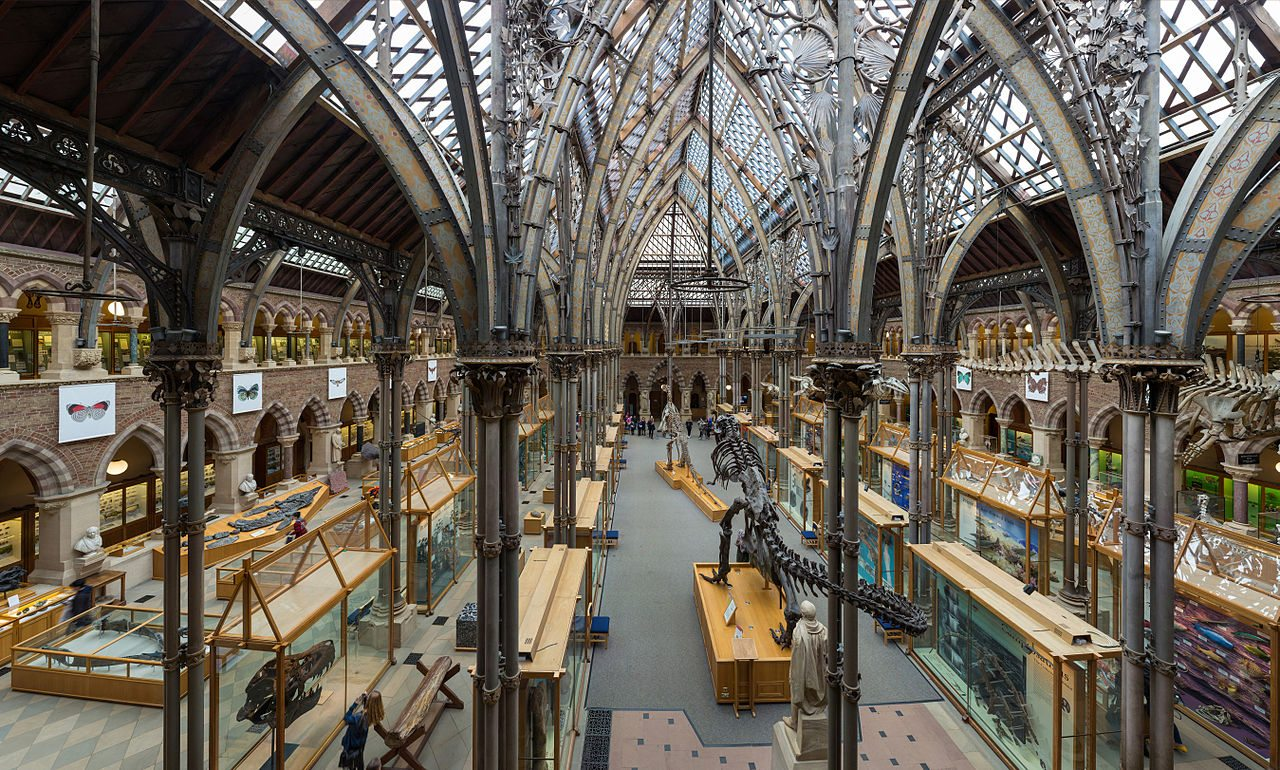 Interior of the Pitt Rivers Museum in Oxford, United Kingdom. Photo by David Iliff in Wikimedia Commons.