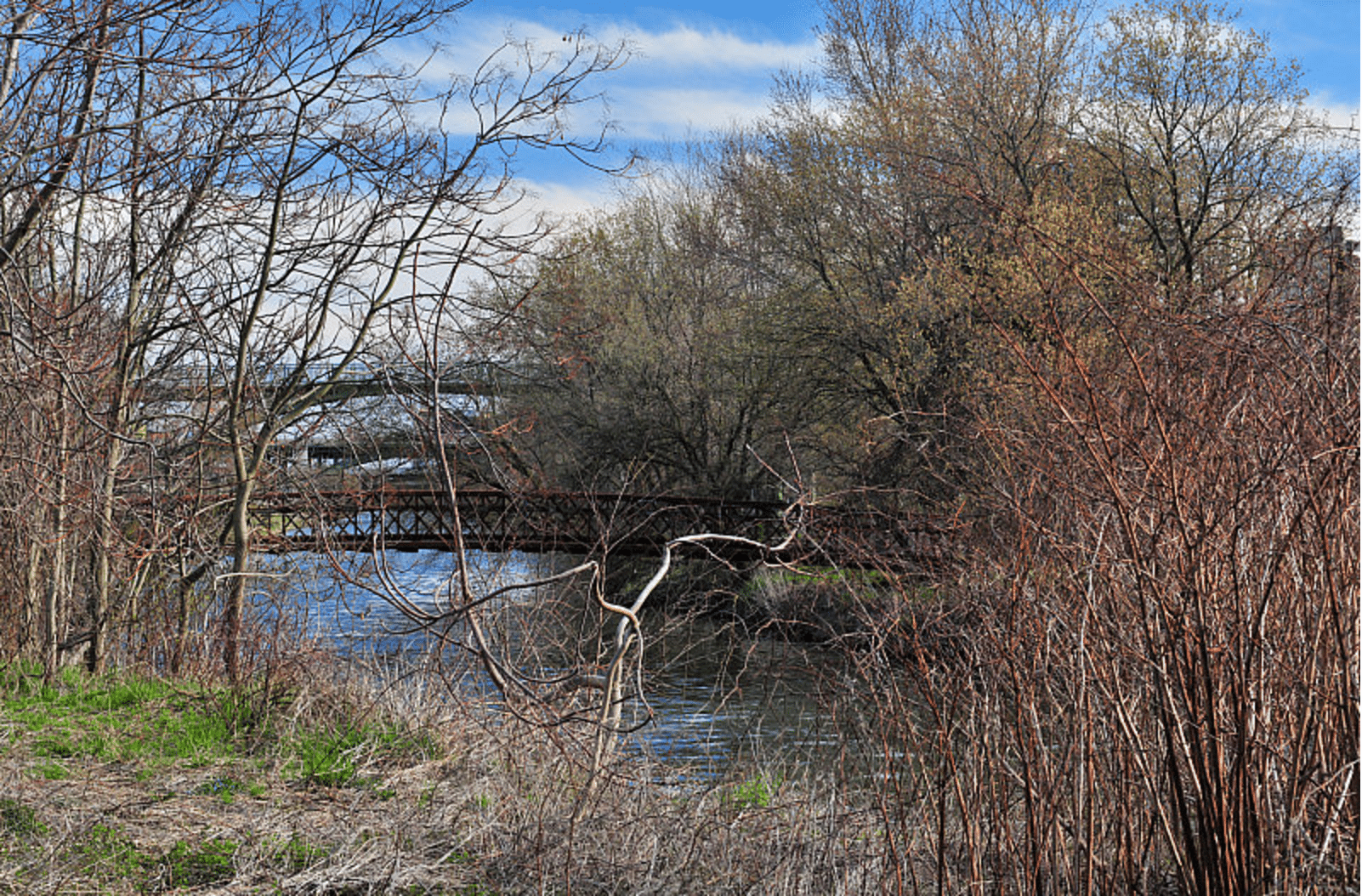 The Lower Don Valley in the spring. Photo by Tania A. in the Torontoist Flickr Pool.