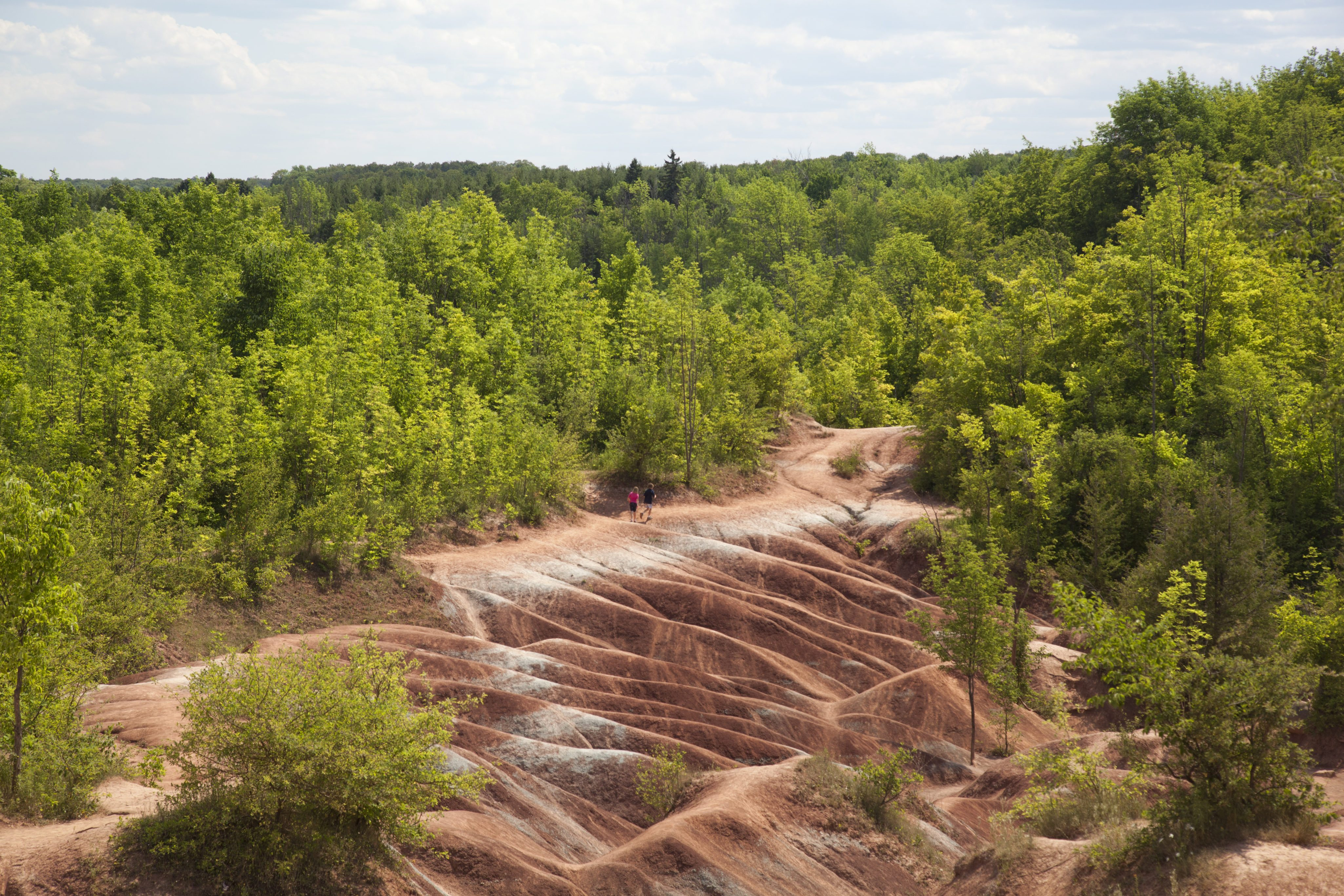 The Cheltenham Badlands on the Royal City Mill Run. Photo courtesy of the Friends of the Greenbelt Foundation.