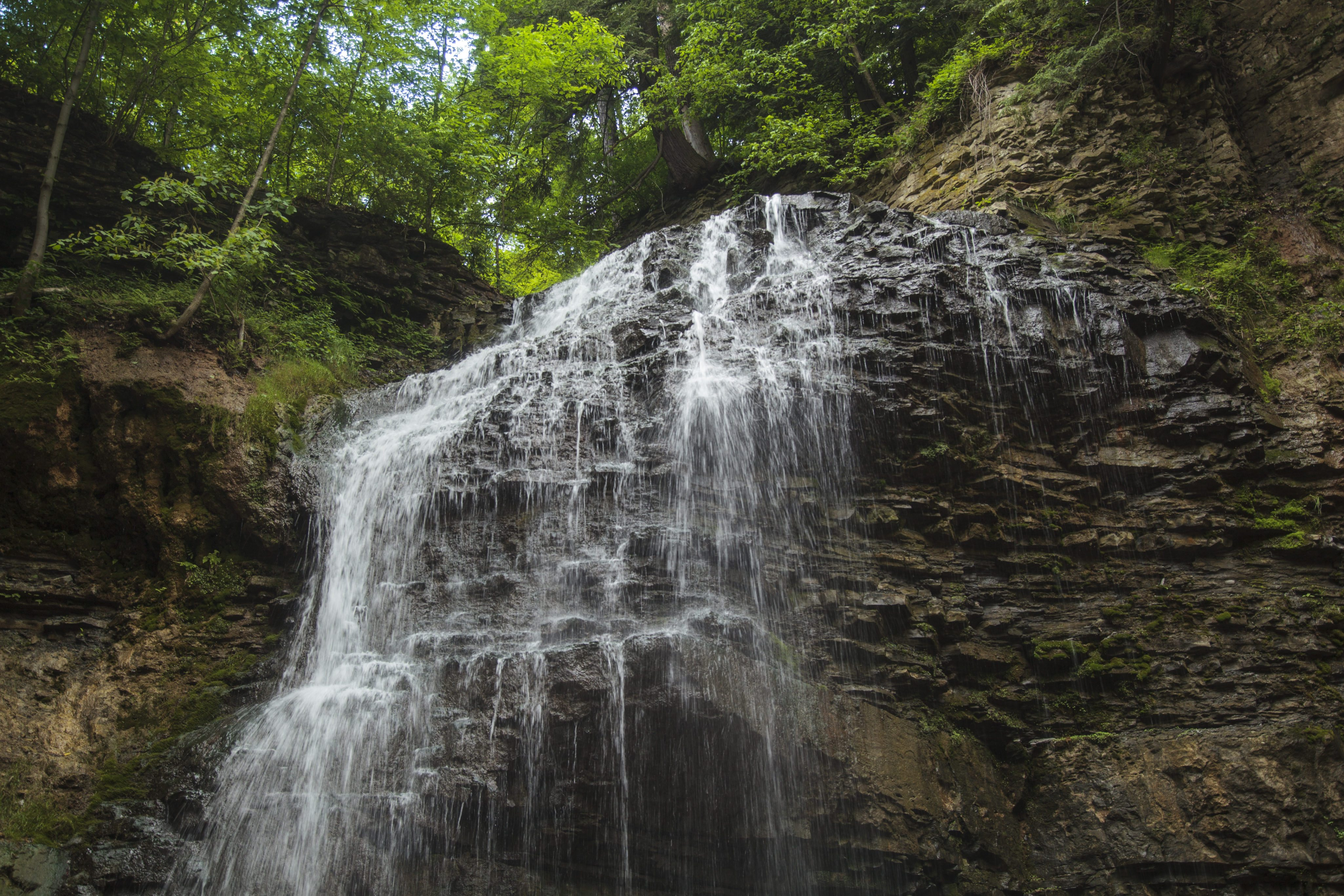 Tiffany Falls. Photo courtesy of the Friends of the Greenbelt Foundation.