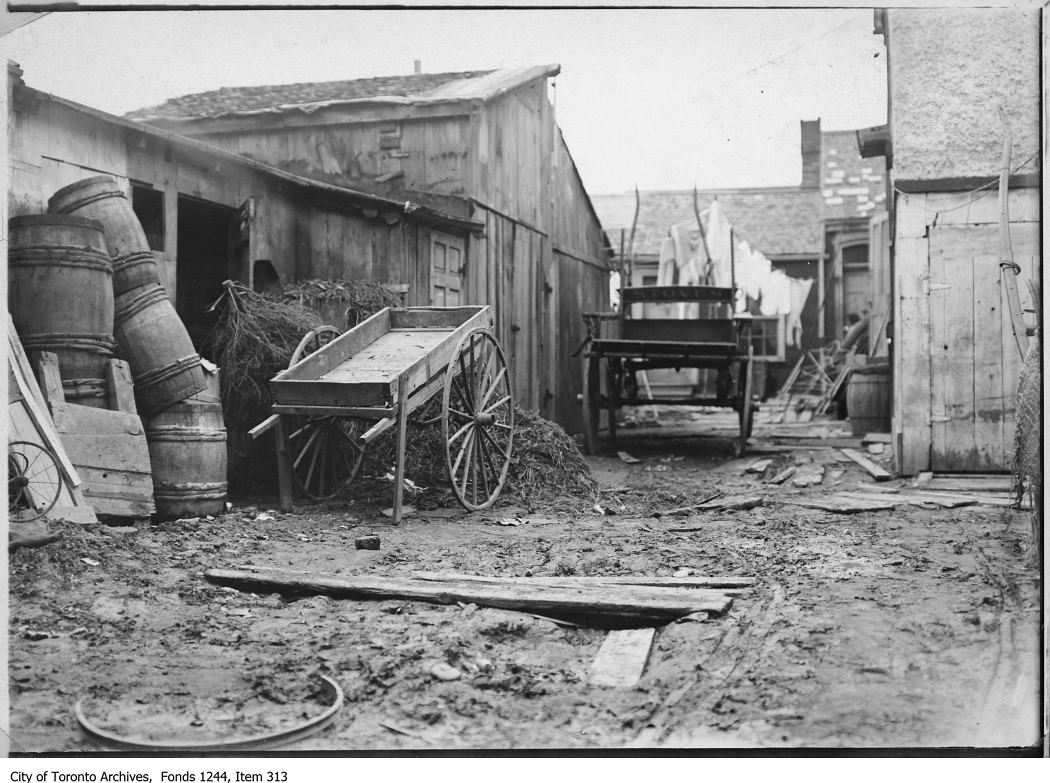 A stable yard in the Ward in 1907. Photo from the City of Toronto Archives Fonds 1244, Item 313.